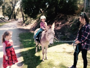 Children riding donkeys at the Street Party courtesy of the Professionals Mt Evelyn